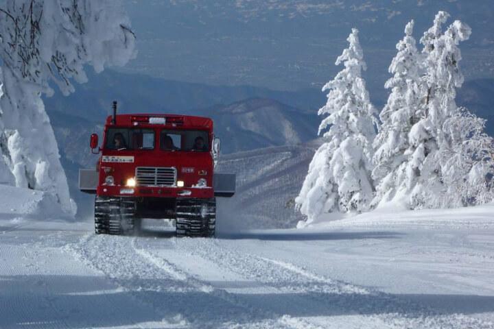 滑るだけじゃ物足りない?それなら特別な雪のイベントも…のイメージ