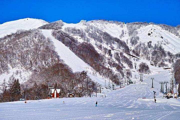 車でスキーに行くなら「高速道路ICに近いゲレンデ」が◎のイメージ