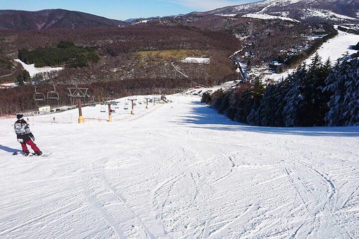 スキー・スノボツアー料金っていつが安い?高い?|時期ごとの雪質・予約の取り易さもご紹介!のイメージ