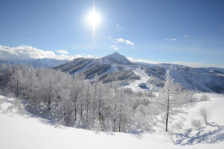 舞子スノーリゾート現地レポート!初~上級まで楽しめる新潟の人気スキー場のイメージ