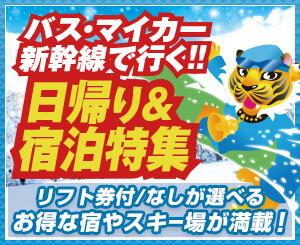 リフト券付などが選べる、バス・マイカー・新幹線で行く、お得な宿泊・日帰りスキーツアーが満載!