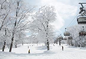 新宿夜発<野沢温泉スキー場>リフト券付き 日帰りバスプラン