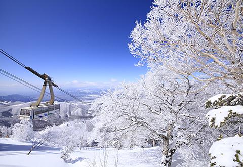【2017年9月24日受付まで: 先行発売】日帰りバスプラン 北志賀竜王
