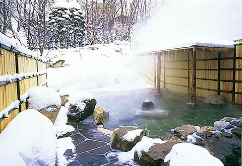 <蔵王温泉スキー場>ZAOセンタープラザ(東館・本館) 宿泊プラン