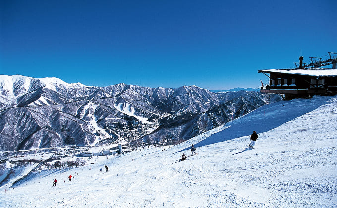 苗場スキー場・かぐらスキー場イメージ
