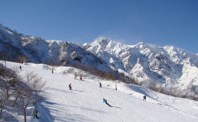 白馬五竜スキー場 コース
