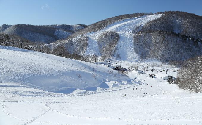 白馬鹿島槍スキー場 コース