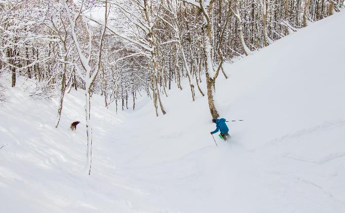 斑尾高原スキー場(長野県)