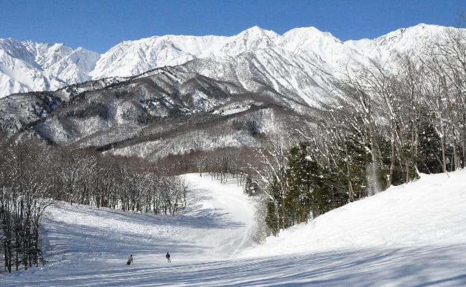 白馬岩岳スノーフィールド(長野県)