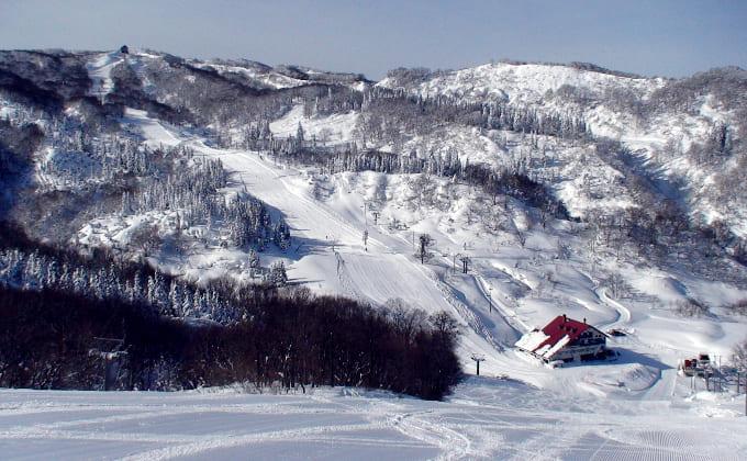 上越国際スキー場(新潟県)