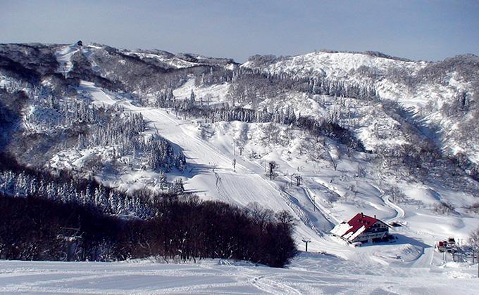 上越 国際 スキー 場 天気