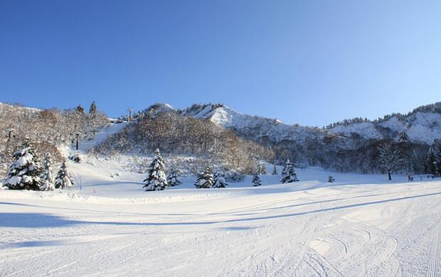 場 スキー 天気 中里 湯沢